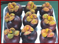 Mangosteen Fruit - packed with healthful Xanthones