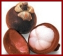 Mangosteen Information