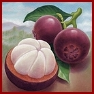 Mangosteen Fruit is Packed with Xanthones